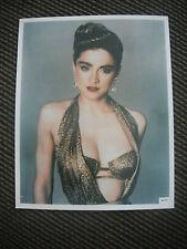 Vtg Madonna Color 8x10 Photo Promo Picture