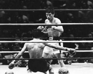 Featherweight Champion JULIO CESAR CHAVEZ vs Refugio Rojas Glossy 8x10 Photo