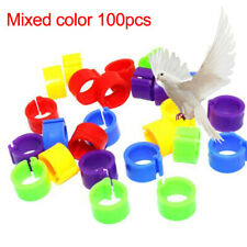 100pcs Bird Rings Leg Bands for Pigeon Parrot Finch Canary Poultry Rings Cool