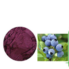 Bilberry Fruit Powder 4:1 Extract Stronger Antioxident Anthocyanin 3.5 oz (100g)