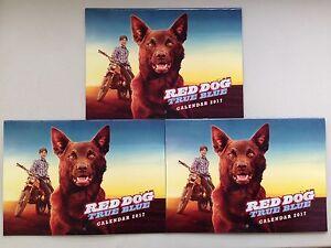 NEW 3 x Red Dog True Blue 2017 Calendar The Movie Our Dog Our Story Legend Koko