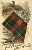 Scottish Tartan Series Greetings From Bonnie Scotland c1910 Postcard