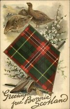 Scottish Tartan Series Greetings From Bonnie Scotland c1910 Postcard