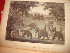 ROYAUME D' AVA BIRMANIE BIRMAN Catching wild Elephants1800