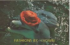 Miami Seaquarium Fashion By Clown Female Porpoise Postcard 1950s