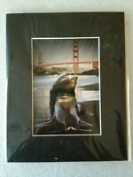 Colin Gift Photography - Sea Lions & Golden Gate Bridge - Gicle's Photo Print