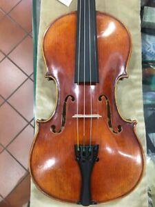 Violino Gewa Maestro 11 anticato con set-up