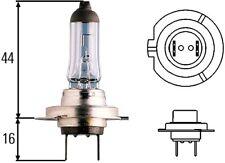Headlight Bulb-Sedan Hella H71070702