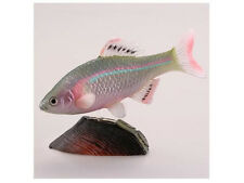 RARE Kaiyodo Capsule Museum Q Animatales Beet Bitterling Male Fish Figure