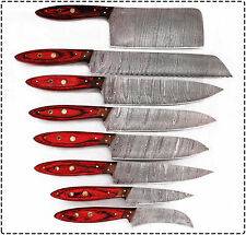 Eye Catching CUSTOM MADE DAMASCUS BLADE KITCHEN/CHEF KNIFE 08 PC'S SET DB 1046-8