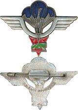 Régiment de Livraison par Air, 1° Escadron de Largage, Delsart (B129)
