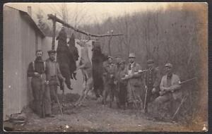 8 Hunters & Rifles with Bear & Deer Kill RPPC 1916 Pennsylvania Photo Postcard