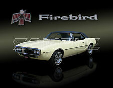 1967 Pontiac Firebird Print