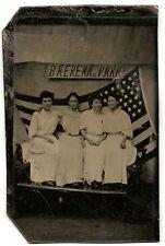 tintype women Patriotic  Flag Baerena Park Baeren Island Albany NY, Hudson River