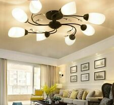 Home Ceiling Lamp Lights Modern Glass Interior Lustres Fashion Lighting Fixtures
