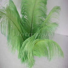 100pcs Green Natural Ostrich Feathers For Wedding Decorations 12~14 inch