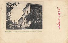 SS0247 - FAICCHIO BENEVENTO - ASILO PRINCIPESSA ELENA VIAGGIATA 1903