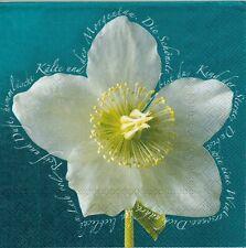 2 Serviettes en papier Fleur Ellébores Rose de Noël Paper Napkins Hellebores