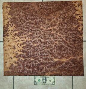""":) Redwood Burl veneer- (4@ 20x21.5"""") WOW!"""