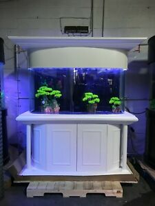 RARE! 170 gallon bow fish tank aquarium in white-- Roman style