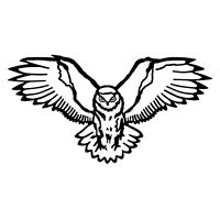 Night Owl Sticker - Flying Bird Decal - Choose Color Size