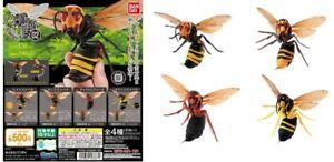 Bandai Dango Mushi Suzumebachi Wasp Hornet Insect Bees Part 2 Gashapon 4 Figure