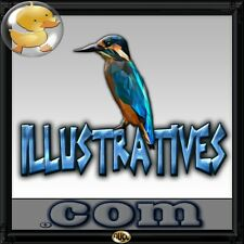 Illustratives.com  A Perfect Domain for a Designer, Art, Vector, Image Software!