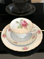 Beautiful Vintage Schumann Arzberg By Bavaria Germany Teacup Saucer Plate 3 Pics