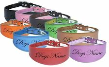 Personalized Greyhound Whippet Collar Leather Dog Collar Padded Backing NAME