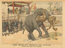 Circus In India, Combat Between Elephant & Tiger, Vintage 1904 Antique Art Print