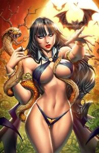 🚨🔥🦇 VAMPIRELLA #22 PAOLO PANTALENA 616 Comics Virgin Day Variant LTD 500 COA