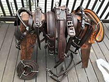 *Leaders Worldwide Inc* Leather Pleasure Harness For Cob ~Brown!