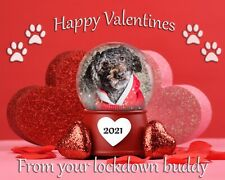 Valentines Lockdown 'Your Dog In The Picture'  Card Gift Friend Love Friend ❤️