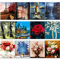 16*20in DIY Digital Oil Painting Paint by Numbers on Canvas Frameless Art Welt d