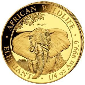 Somalia 200 SH. 2021 - Elefant - African Wildlife - Anlagemünze - 1/4 Oz Gold ST