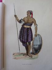 COSTUME OCEANIE / Guerrier de l'Ile de Sawoe  1847 rehaussée de couleurs