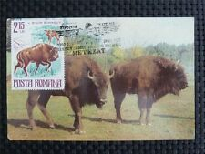ROMANIA MK BISON WISENT MAXIMUMKARTE CARTE MAXIMUM CARD MC CM c1010