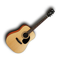 Cort AD810 Guitar Dreadnought Steel String Acoustic PRO-SCM Professional Setup