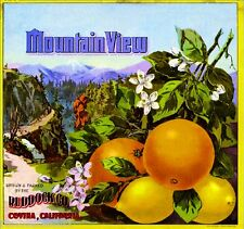Covina Los Angeles County Mountain View Orange Citrus Fruit Crate Label Print