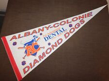 "VINTAGE 30"" LONG ALBANY COLONIE DIAMOND DOGS 1ST ADVANTAGE DENTAL PENNANT"