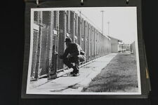 Vietnam War Photo Album USAF SAC Sentry Dog Training 8x10 Black White Pictures