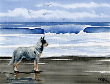 Australian Cattle Dog Dog Watercolor 8 x 10 Art Print Signed Djr