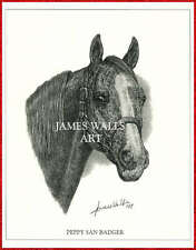 PEPPY SAN BADGER - QUARTER HORSE - CUTTING HORSE ART PRINT by JAMES WALLS