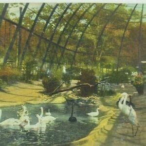 Vintage Early 1900's Postcard Kansas City, Missouri Bird Cage Forest Park 1910