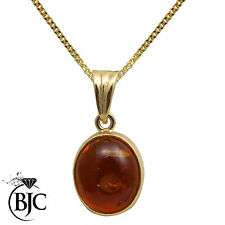 9Carat Yellow Gold Amber Fine Necklaces & Pendants