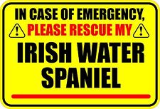 In Case Of Emergency Rescue Irish Water Spaniel Sticker