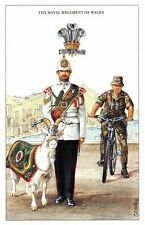 Postcard The British Army Series No.39 The Royal Regiment of Wales - Geoff White