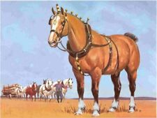 1962 Clydesdale Draft Horse Colored Print - Sam Savitt Free Shipping