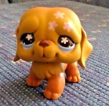 Littlest Pet Shop #481 St Bernard Brown Flower Head Tattoo Blue Eyes Dog