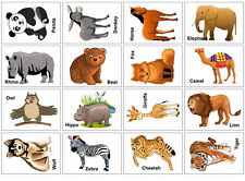 Animals Flash Cards Set Educational Early Learning Picture Word Zoo SEN 32 Cards